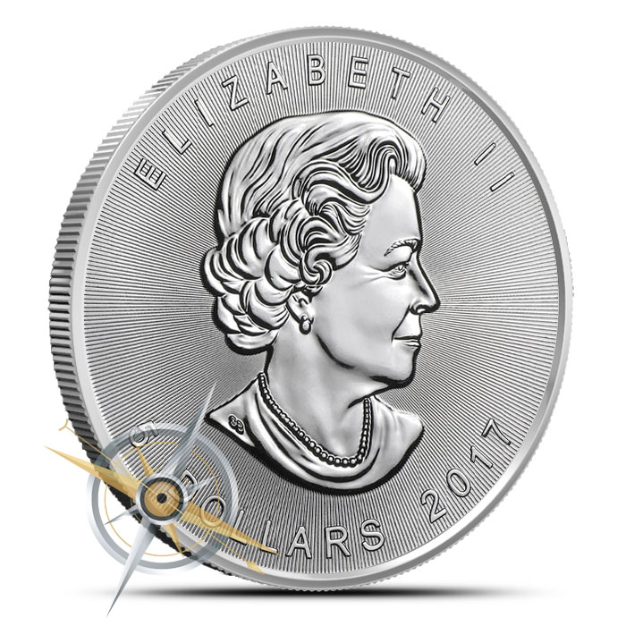 2017 Canadian Silver Maple | 25 Count
